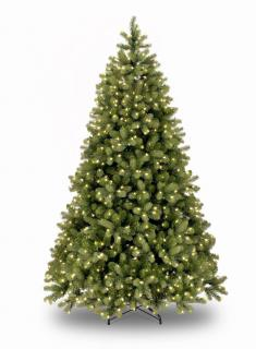 6ft Pre-lit Bayberry Spruce Feel-Real Artificial Christmas Tree