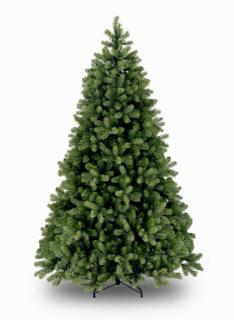 Our 8ft Bayberry Spruce has rounded branches for the perfect display. FREE Gift included when you buy online.