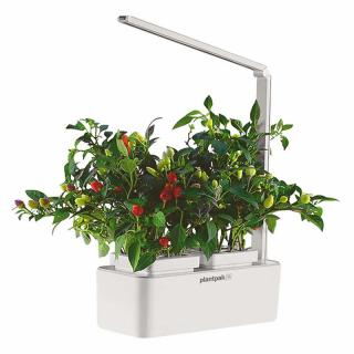 This self-watering, self-feeding indoor garden has an LED light & can be used for fast & easy growing of vegetables, herbs, salad greens & more, throughout the year.