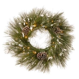 2ft Pre-lit Snowy Bristle Pine Cone Artificial Christmas Wreath