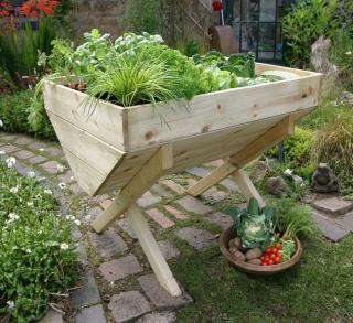 Why not grow your own vegetables with this small vegetable patch.