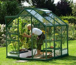 Vitavia Venus 3800 Greenhouse in Green