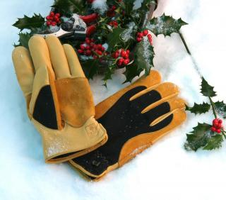 Gents 'Winter Touch' Gold Leaf Garden Gloves