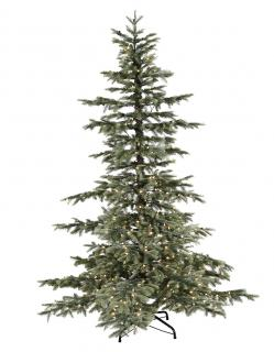 Our 8ft Pre-lit Windsor Spruce will make a stunning display. FREE Gift included when you buy online.