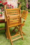 Provence Folding Chair